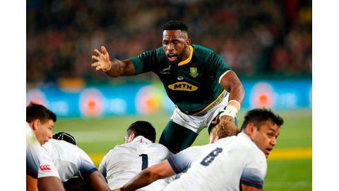 Springbok fans 'on their backs'