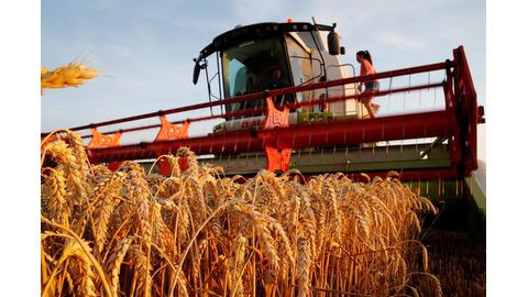 World food prices ease for second month running
