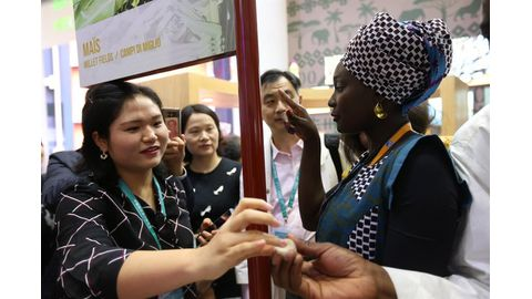 Africa seeks more exports to China through expo