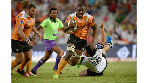 Cheetahs, Kings officially join PRO14