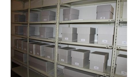Skulls safe in air-conditioned room