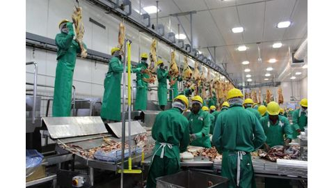 Beef sector still competitive