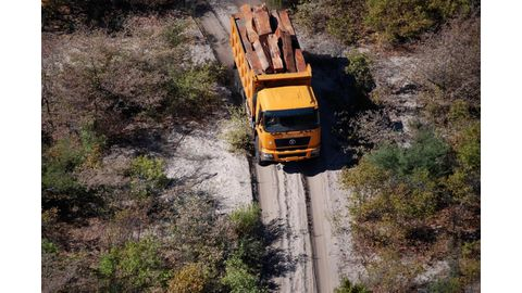 Timber impounded, no arrests made