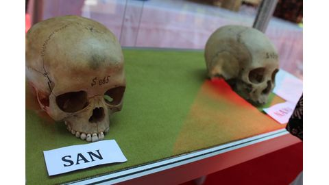 Calls to criminalise German skull collectors