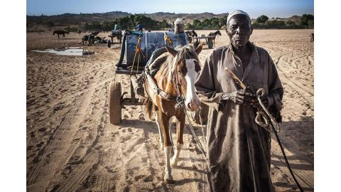 Survival in arid eastern Chad depends on struggle for water
