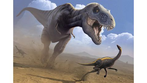 T. rex could bite with the force of three cars