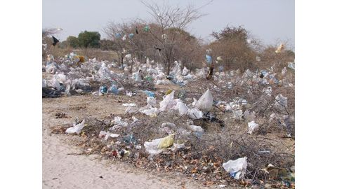 Plastic bags' days are numbered