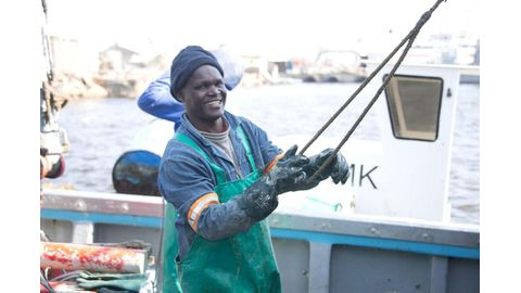 Fisheries budget cut by 42%