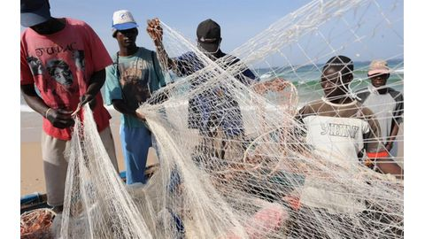 Illegal fishing catastrophic in West Africa