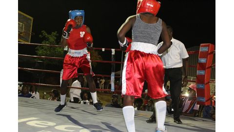 Professional boxing excludes women