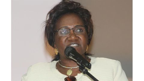 Minister hits back at Tjivikua
