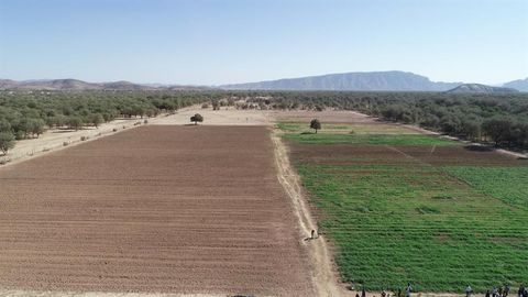 40 000 to benefit from agri project