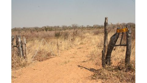 Illegal fences pulled down