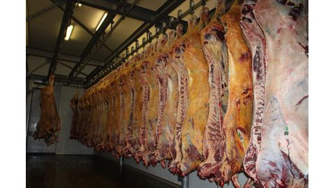 Witvlei Meat threatens to terminate talks with Agribank