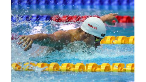 Hungarian swimmer 'sorry'