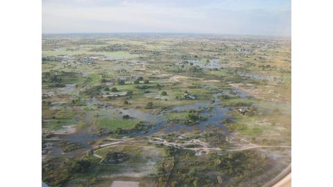 Integrated drought system needed for Cuvelai