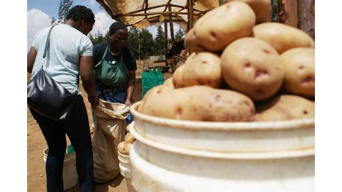 In Kenya, struggling potato growers ink a new deal