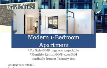 Modern 1 Bedroom Apartment