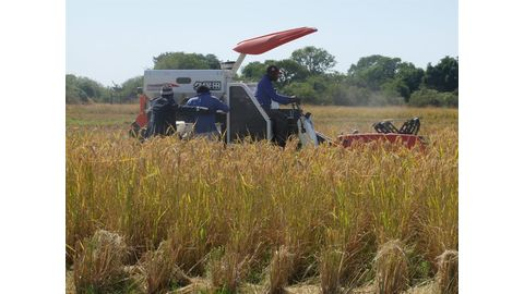 Pohamba boosts small-scale farmers