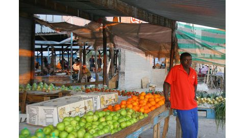 Namibia imports 96% of its fruit