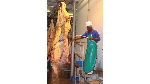 Agribank keen to restart Witvlei abattoir