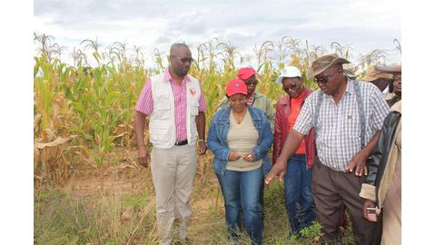 N$650 000 for garden project