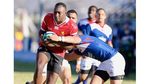 Lions pounce on Welwitschias