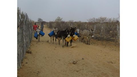 Communities in dire need of water