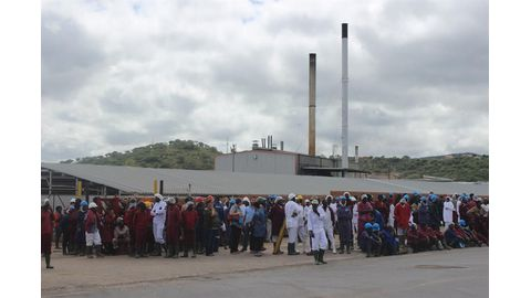 Eight hospitalised at Meatco