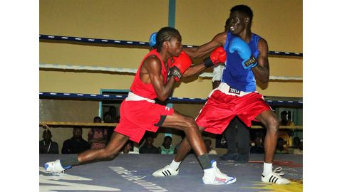 Boxing championship launched