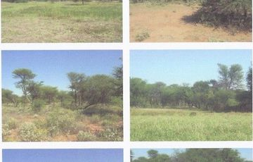 Beautiful Cattle, Game 5170 HA, North of Okahandja, With Business Opportunities..Charcoal Valued at N$17 Mil and Building Sand