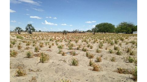 Compounding impacts of crippling drought