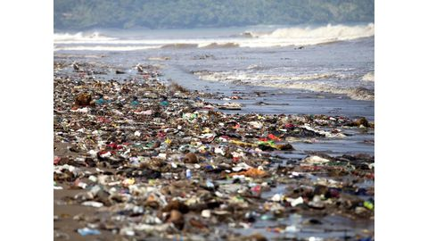 Possible solution to plastics pollution