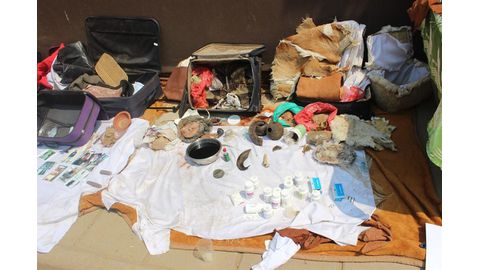 No bail for bogus traditional healers