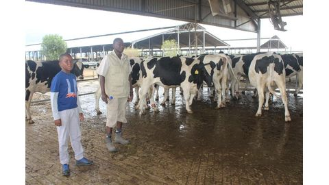 A boost for milk production
