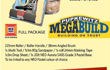 NEO PAINTS FULL PACKAGE