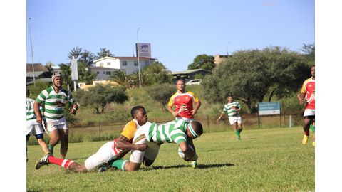 Suburbs ready for Wanderers