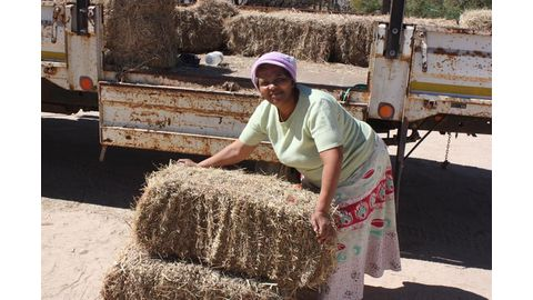 Agriculture's secret weapon: empowering women