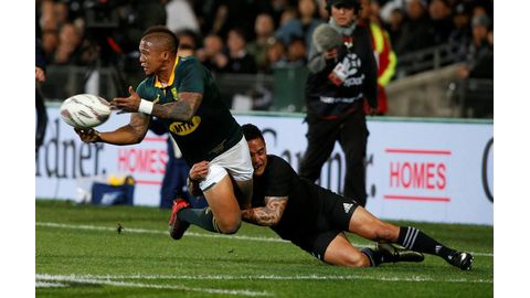 Boks will bounce back