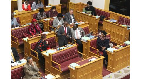 Swapo MPs mum during question time