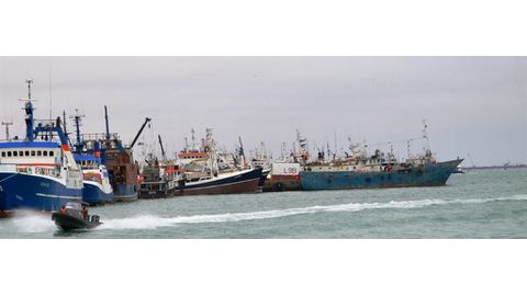 Pilchard moratorium too little, too late